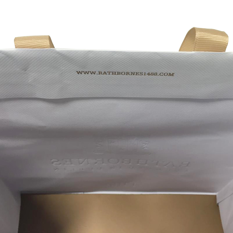 Ribbon Handle Custom Luxury Paper Bags