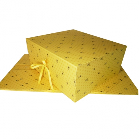 Large Golden Hard Collapsible Storage Boxes