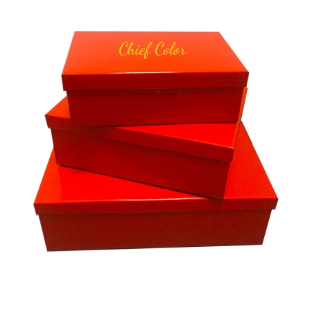 Glossy Laminated Flat Packed Box with Adhesive