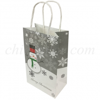 Printed Kraft Paper Packaging Bag