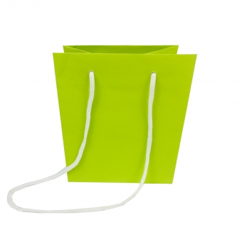 Printed Bright Green Paper Carrier Bags