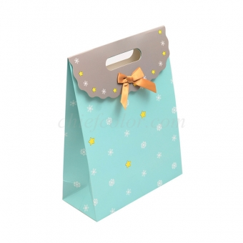 Printed Candy Gift Bags