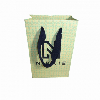 Luxury Shopping Paper Bag With Handle